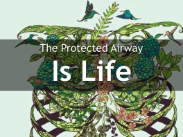 The Protected Airway 2.006